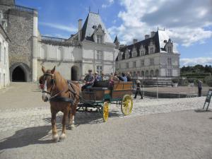 Balade à cheval à Villandry
