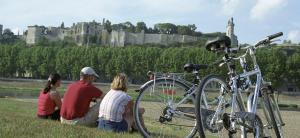 Excursion La Loire à vélo proche Relais du Plessis