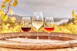 week-end insolite Dégustation de Vins de la Loire